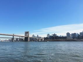 Whattup Brooklyn?